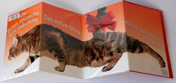 Leporellokarte zum Aufklappen mit Umschlag - Katze