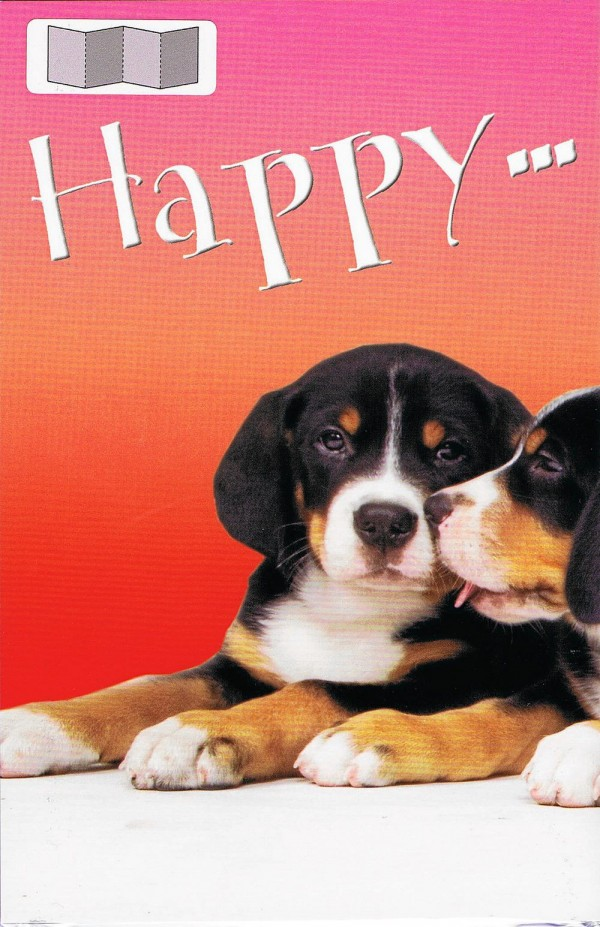 Leporellokarte zum Aufklappen mit Umschlag - Hunde