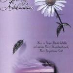 Beileidkarte, Trauerkarte, Aufrichtige Anteilnahme 81-400/4