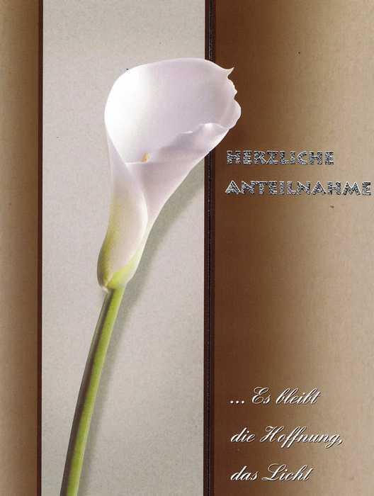 Anteilnahme Trauerkarte mit Spruch 200625