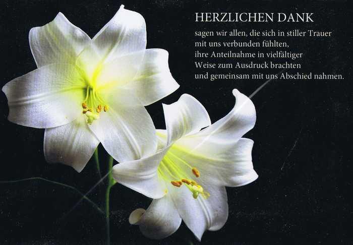 Trauer - Herzlichen Dank 81-11-037