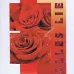 Karte Alles Liebe 41-11-020 Rosen