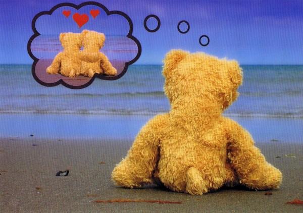 Karte, Küstenart, verliebter Teddy