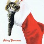 Postkarte Merry Christmas Kitty