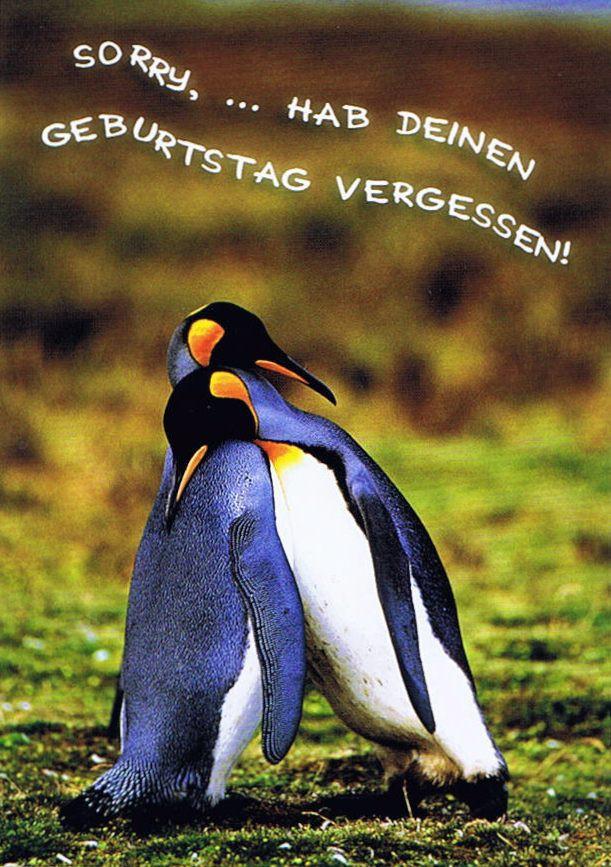 Geburtstag Vergessen Karte.Postkarte Piguine Sorry Hab Deinen Geburtstag Vergessen