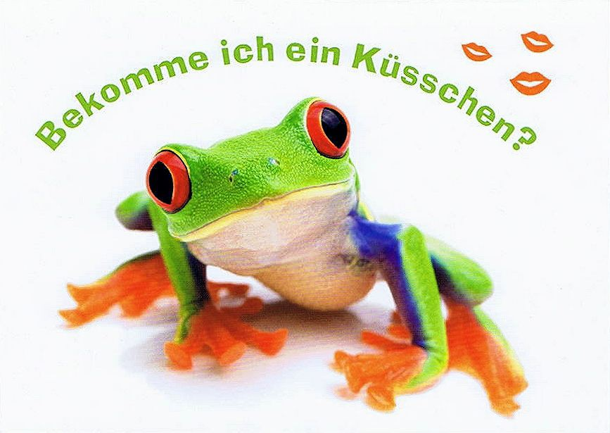 Postkarte Frosch Bekomme Ich Ein Kusschen Kartenwichtel De