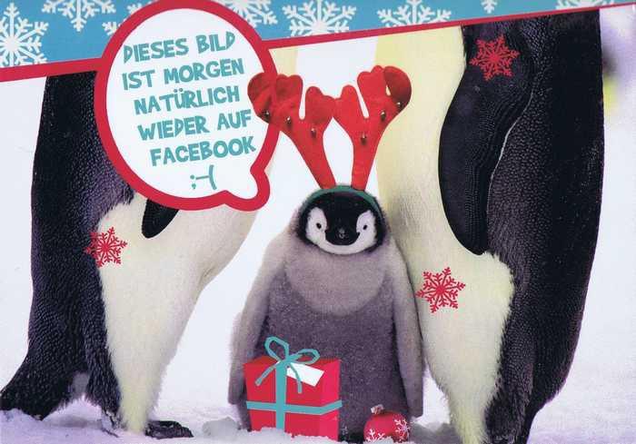 Kleine lustige Weihnachtskarte - Pinguin
