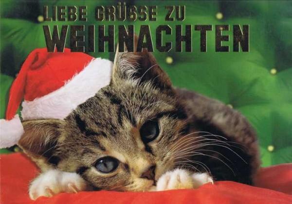 Kleine Weihnachtskarte - Weihnachtskätzchen