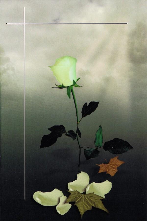 Trauerkarte ohne Worte