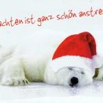 Lustige Weihnachtskarte - Eisbär