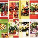 8 Klassische Weihnachtskarten mit Fotomotiv