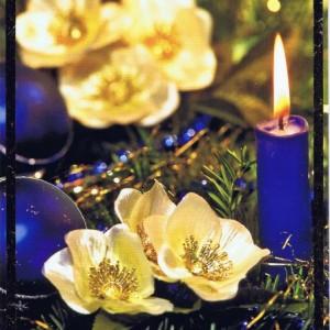 Klappkarte - Weihnachten - mit Goldprägung (22-3432)