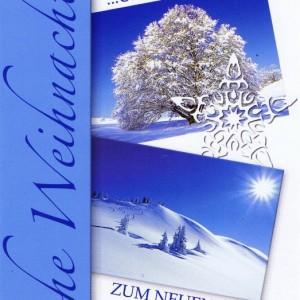 Weihnachtskarte Winterliches Motiv (22-3592)