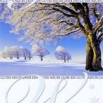 Weihnachtskarte Winterliches Motiv (22-3595)