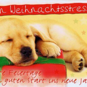 Weihnachtskarte - Nur kein Weihnachtsstress