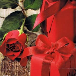 Karte zum Valentinstag mit roter Rose VT101