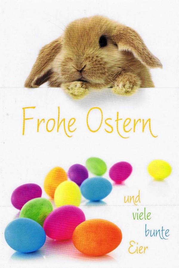 Osterkarte - Osterhase und viel Bunte Eier O136