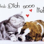 Karte zum Valentinstag - Hund und Katze -